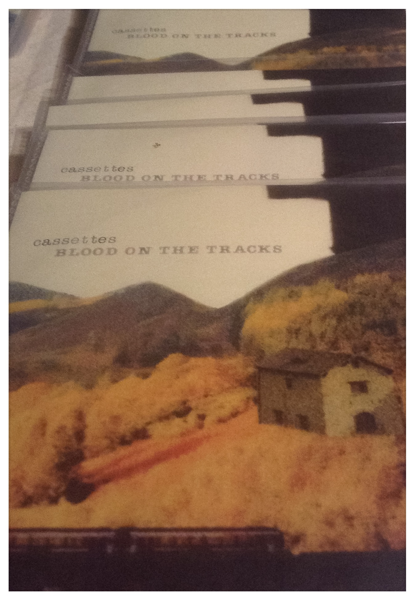 Front cover Blood On The Tracks:cassettes