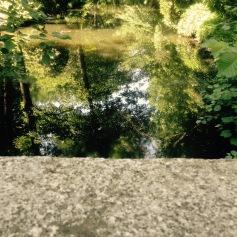 tiergarten pool